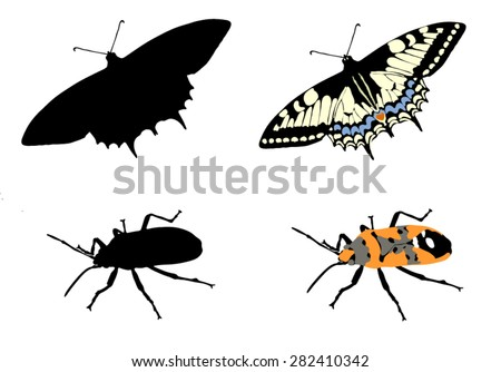 Bug and butterfly - stock vector