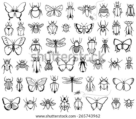 Bug, butterflies, bees, dragonflies, ants and more - stock vector