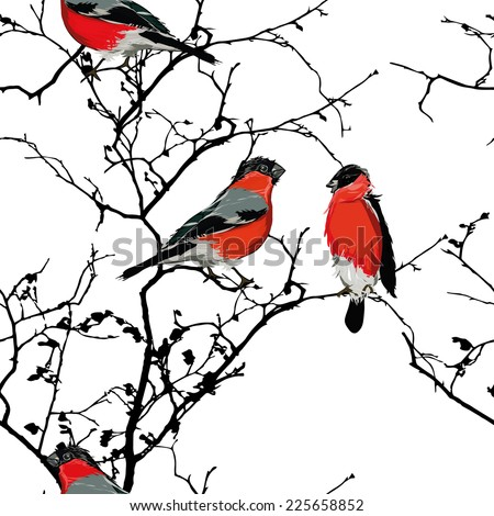 Bullfinches on the branch seamless vector pattern, EPS10 file - stock vector