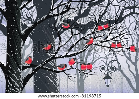 Bullfinches on trees in winter city - stock vector