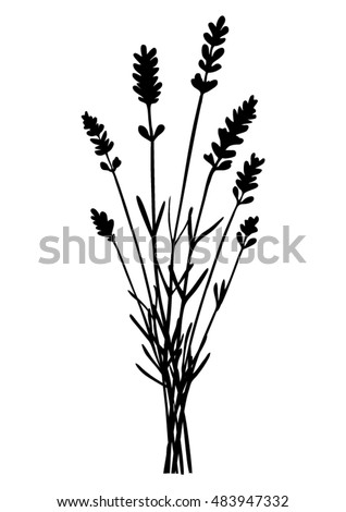 bunch lavender flowers black silhouette vector stock vector hd rh shutterstock com