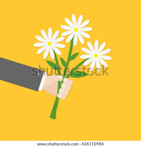 Businessman hand holding bunch bouquet of white daisy flowers. Greeting card.  Yellow background. Flat material design. Vector illustration - stock vector