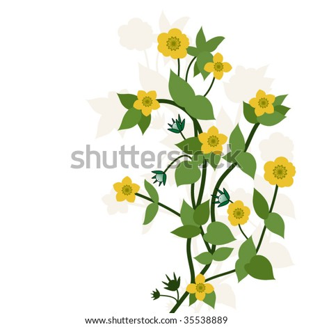 buttercup flowers on a stem - stock vector