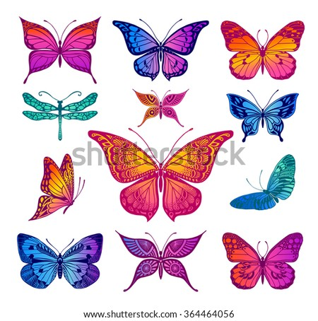 Butterflies graphic illustration - stock vector