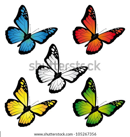 butterflies in different colours - stock vector