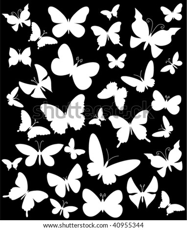 butterflies silhouette on black background.vector illustration - stock vector