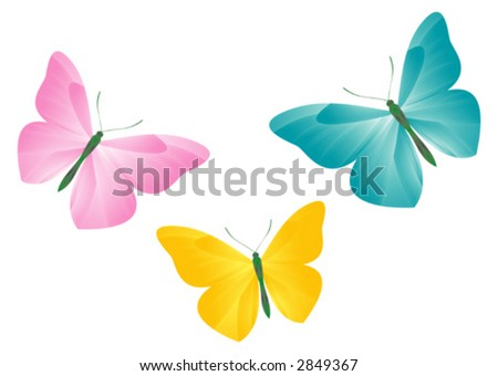 Butterflies (Vector Illustration) - stock vector