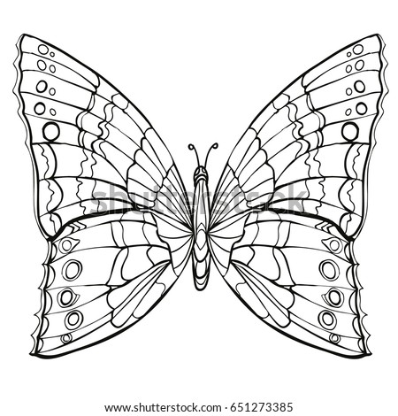 Butterfly Coloring Book Adult Older Children Stock Vector 2018