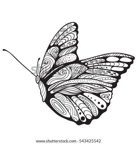 butterfly coloring book adults vector illustration stock vector