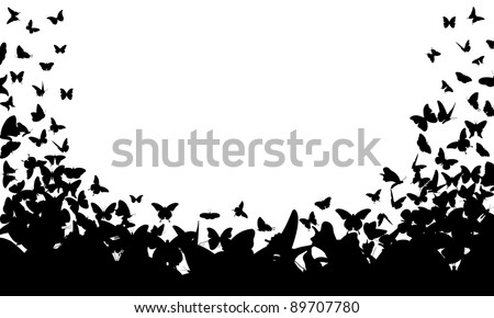 butterfly frame isolated on white - stock vector