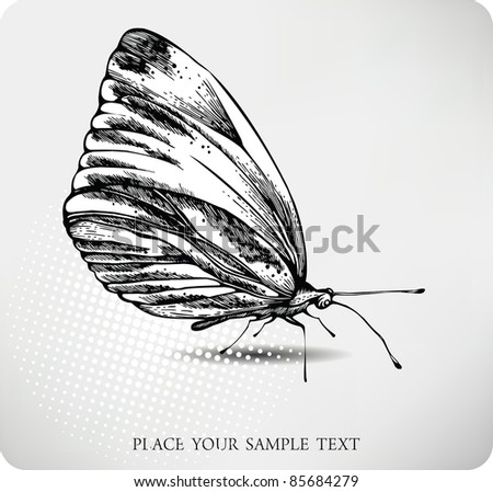 Butterfly hand drawing. vector - stock vector