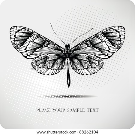 Butterfly hand drawing.Vector - stock vector