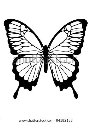 Butterfly in Black and White - stock vector