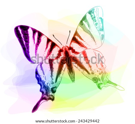 Butterfly. Iridescent colours. Unfinished Watercolor drawing imitation. Vector illustration. - stock vector