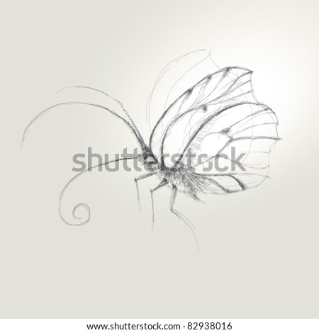 Butterfly / Realistic sketch (not auto-traced) - stock vector