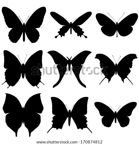 Butterfly silhouette set. Icon collection.  - stock vector