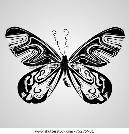 butterfly vector - stock vector