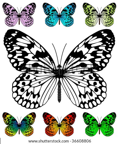 Butterfly Kite Stock Images RoyaltyFree Images  Vectors