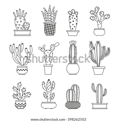 Cactus collection in vector illustration  - stock vector