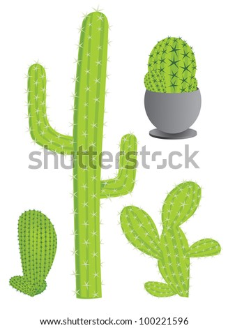 Cactus set - stock vector
