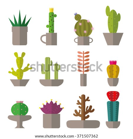 Cactus set.Flat style.Cactus Vector collection of succulents.Modern flat style.Green plant icons,desert nature,floral exotic, tropical flower,Home cactus garden,wild botany illustration.Simple set - stock vector