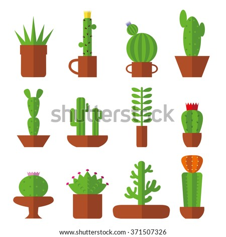 Cactus set.Flat style.Cactus Vector succulents collection.Modern flat style.Green plant icons,desert nature,floral exotic,tropical flower,Home cactus garden,wild botany illustration.Vector simple set - stock vector