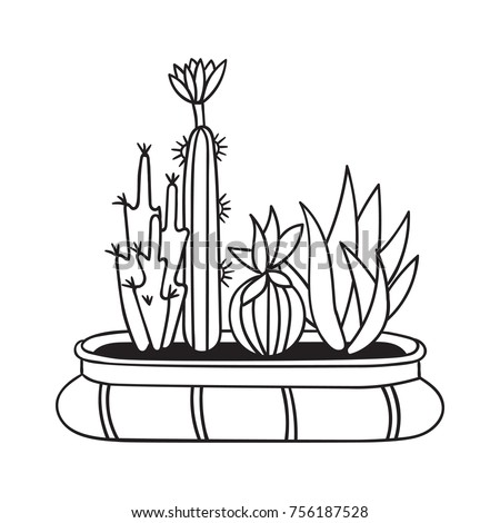 Cactuses With Flowers In Pot For Coloring Books Funny Cute Cactus Black Contour