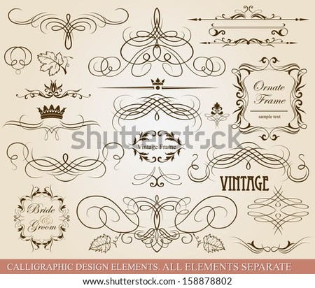 Calligraphic design elements. - stock vector
