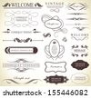 calligraphic design elements and page decoration with ribbon/ vector collection - stock vector