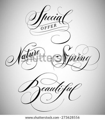 Calligraphic Lettering of words special, nature, spring and beautiful.   - stock vector