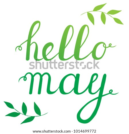 Good Calligraphy Quote Hello May. Handwritten Lettering On White Background  Isolated, Modern Brush Pen Lettering