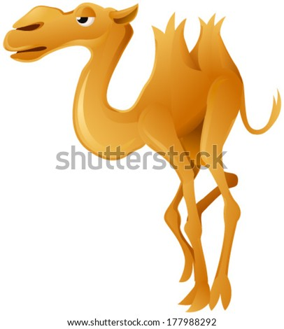 Camel cartoon, vector, vertical, over white,  isolated  - stock vector