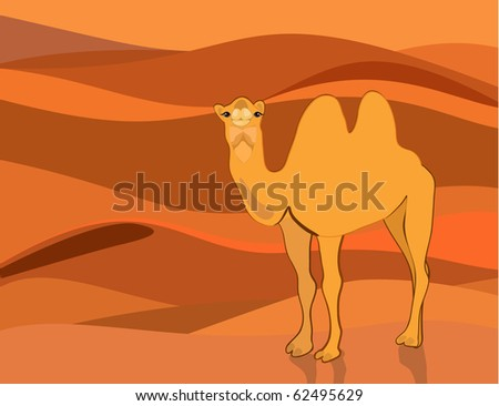 Camel on the background of the desert - stock vector