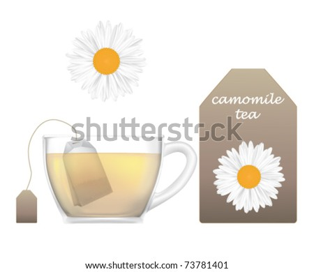camomile tea - stock vector
