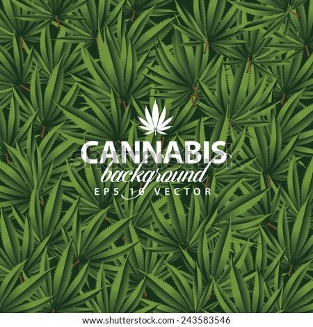 Cannabis background EPS 10 vector stock illustration  - stock vector