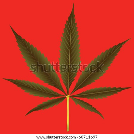 cannabis leaf against orange background, abstract vector art illustration