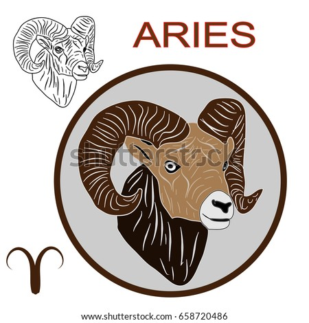 Capricorn astrological sign of the zodiac, head vector illustration