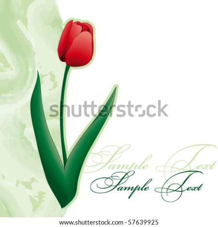 Card with tulip - stock vector