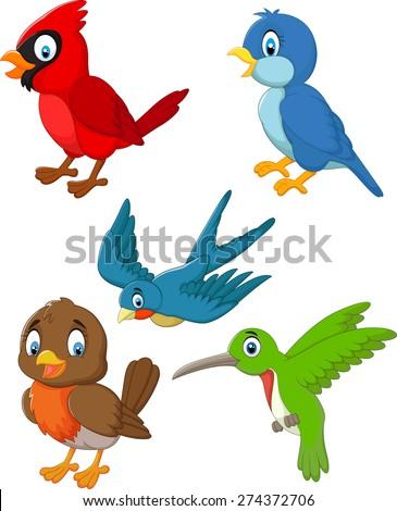 Cartoon birds collection set - stock vector