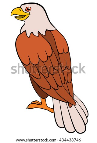 Cartoon birds for kids: Eagle. Cute bald eagle sits and smiles. - stock vector