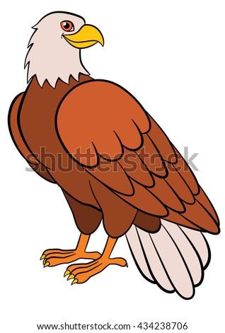 Cartoon birds for kids: Eagle. Cute bald eagle smiles. - stock vector