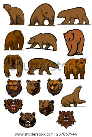 Cartoon brown bears and grizzly in different poses and aggressive bear heads for tattoo, mascot or wildlife design - stock vector