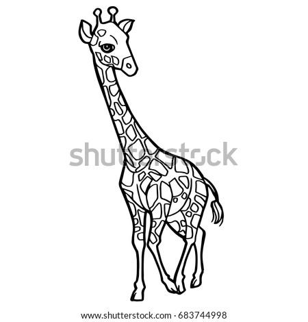 Cartoon Cute Giraffe Coloring Page Vector Stock Vector 683744998 ...