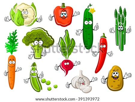 Cartoon organic healthful broccoli, sweet orange carrot, bright chilli and bell peppers, succulent cucumber, potato, garlic, pod of green pea, cauliflower, asparagus and radish vegetables - stock vector