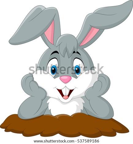 Arctic rabbit clipart cliparthut - free clipart