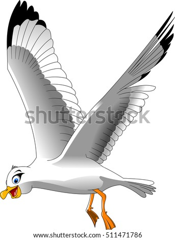 Cartoon smiling seagull on white background, vector and illustration