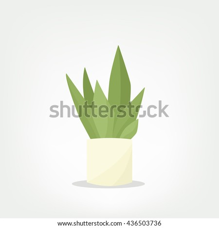 cartoon vector pot plant - stock vector