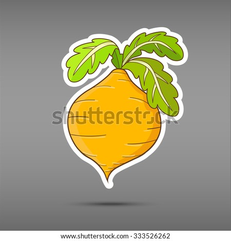 Cartoon vegetable isolated on grey background. Sticker turnip. Funny  vegetable in paper cut style. Applique Background. Eco vagetable icon  - stock vector