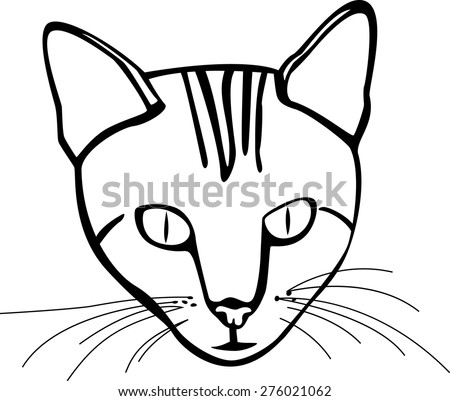 cat head - stock vector