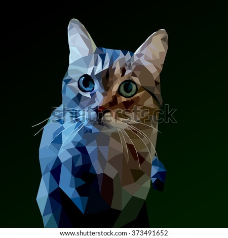 cat low poly on a dark background. vector illustration